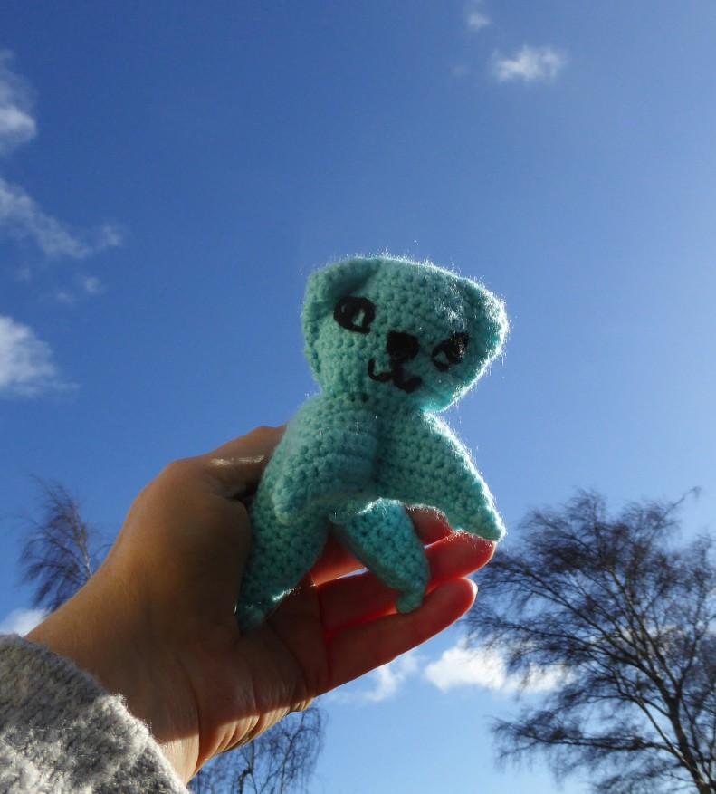 Ta dah! Crochet attempt number #1. Kept it simple with the kitten size in a plain DK yarn.