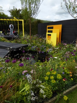 Loved the colours, textures and planting detail in The Urban Oasis garden by Mark Draper