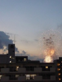 Fireworks! A great send off as we headed to Kyoto the next day. We returned to Tokyo for our last couple of nights.