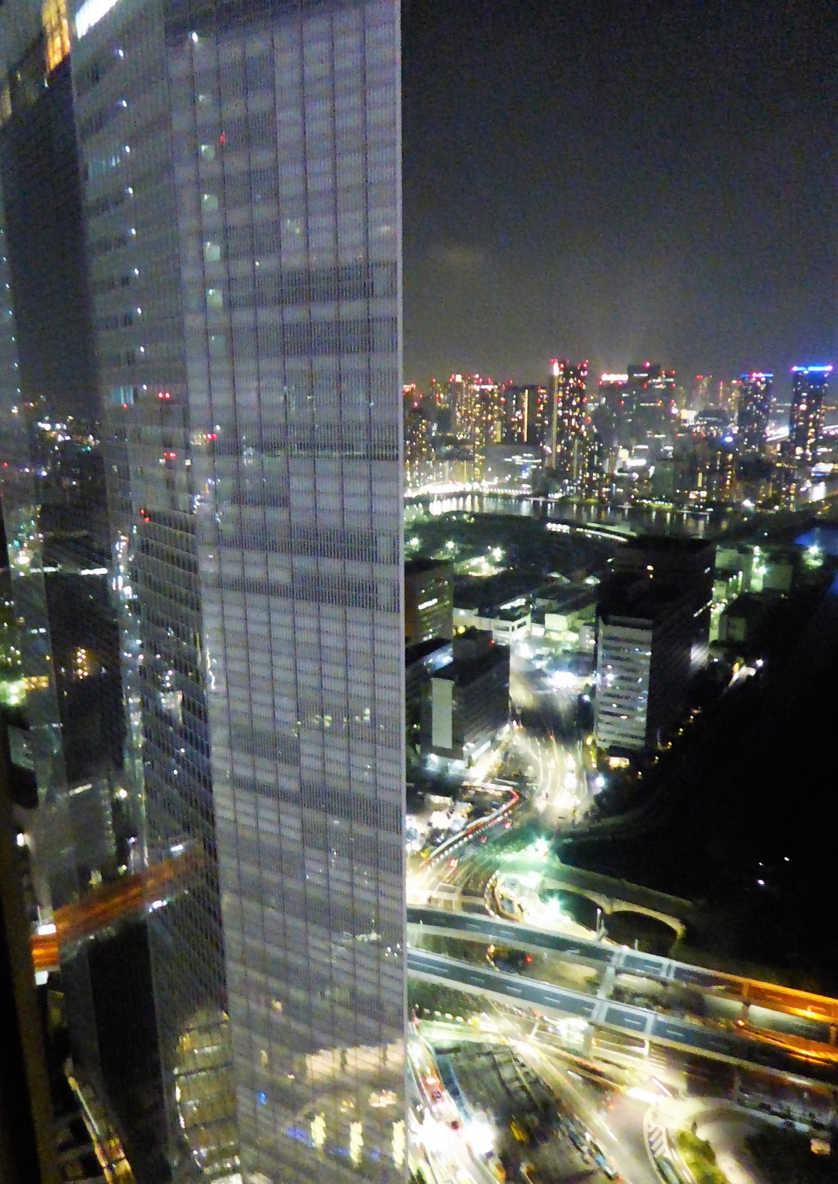 Goodbye, Tokyo. You're looking very Blade Runner tonight. Goodbye, Japan. You were amazing.