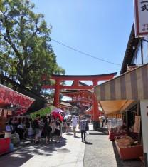 Follow the red torii (gates).