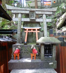 So why do they call this the fox temple again? The little torii are bought from the temple shop. People write their prayers on them and leave them on the shrines.